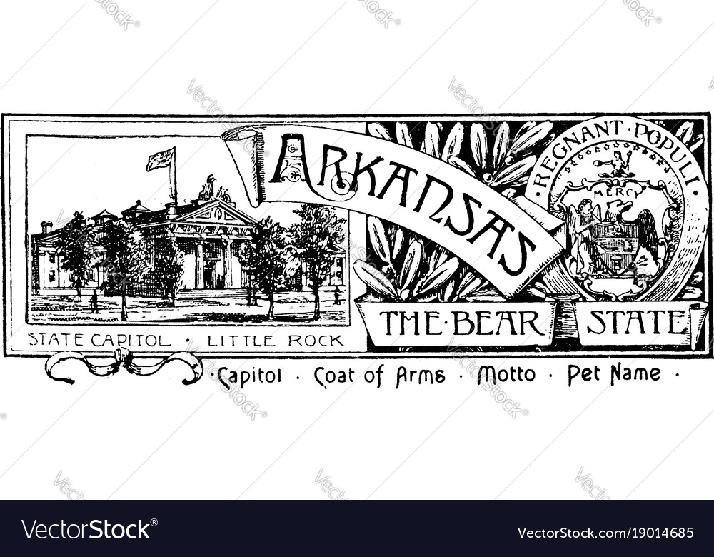 The state banner of arkansas the bear state vector image