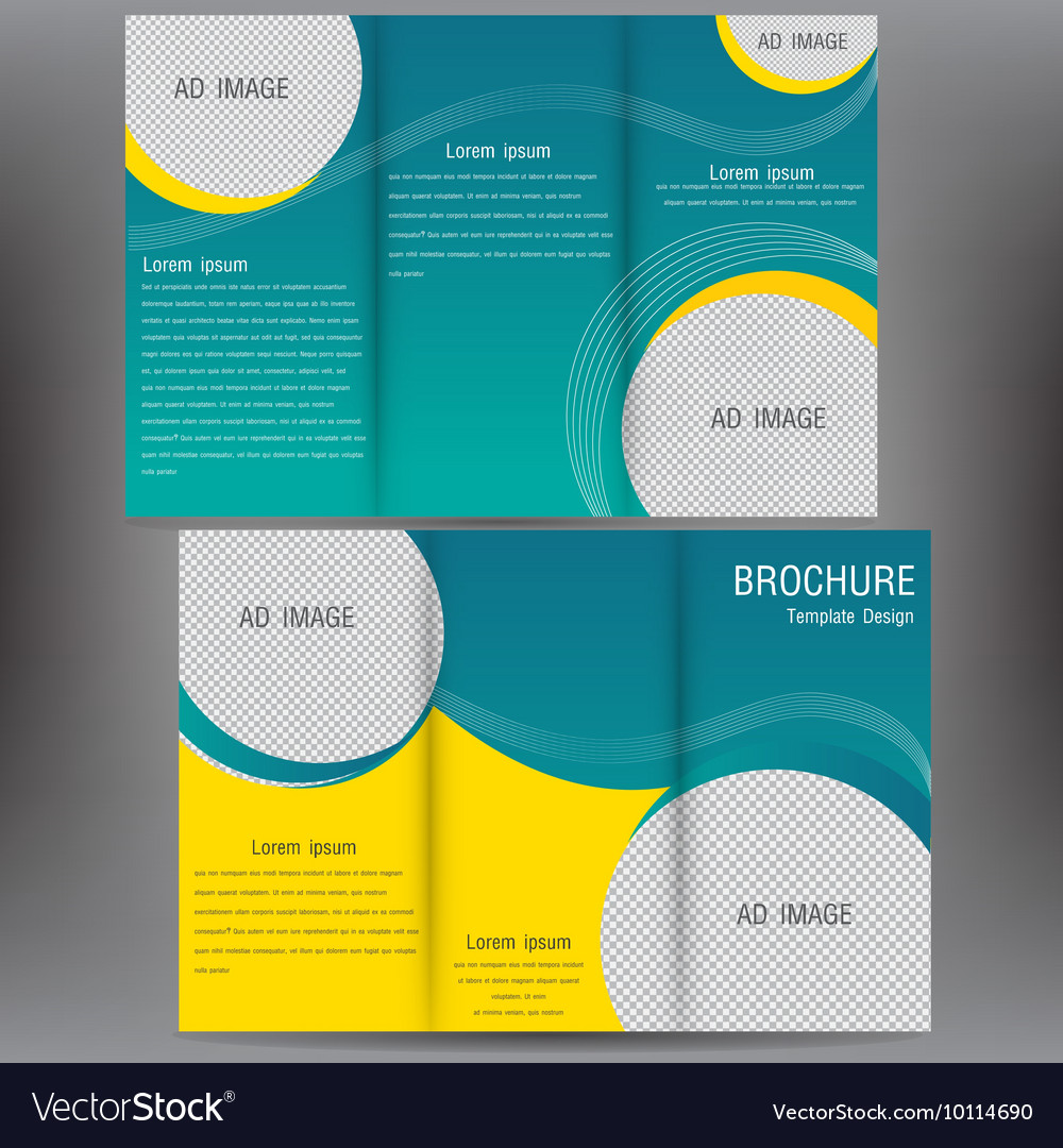 Brochure business template design EPS 10 three