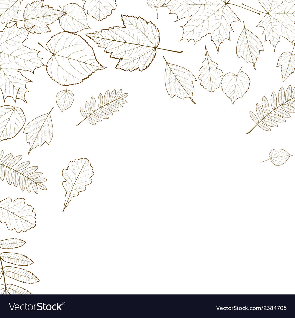 Autumn Leaf Skeletons Template Royalty Free Vector Image