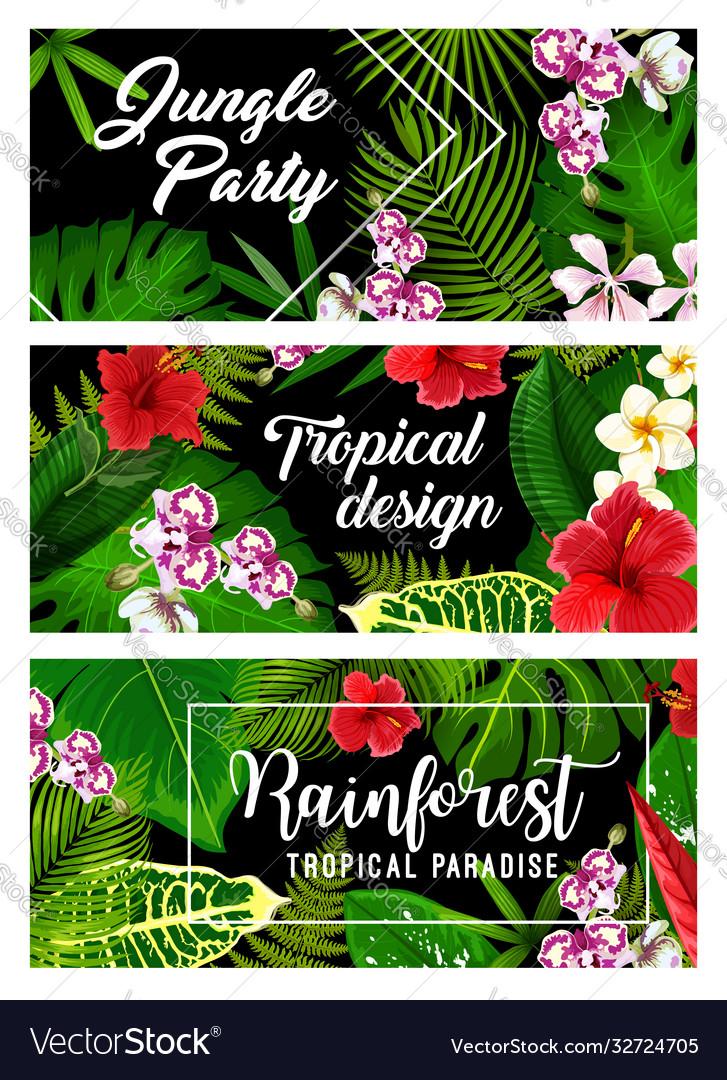 Tropical leaf palm jungle flowers summer paradise