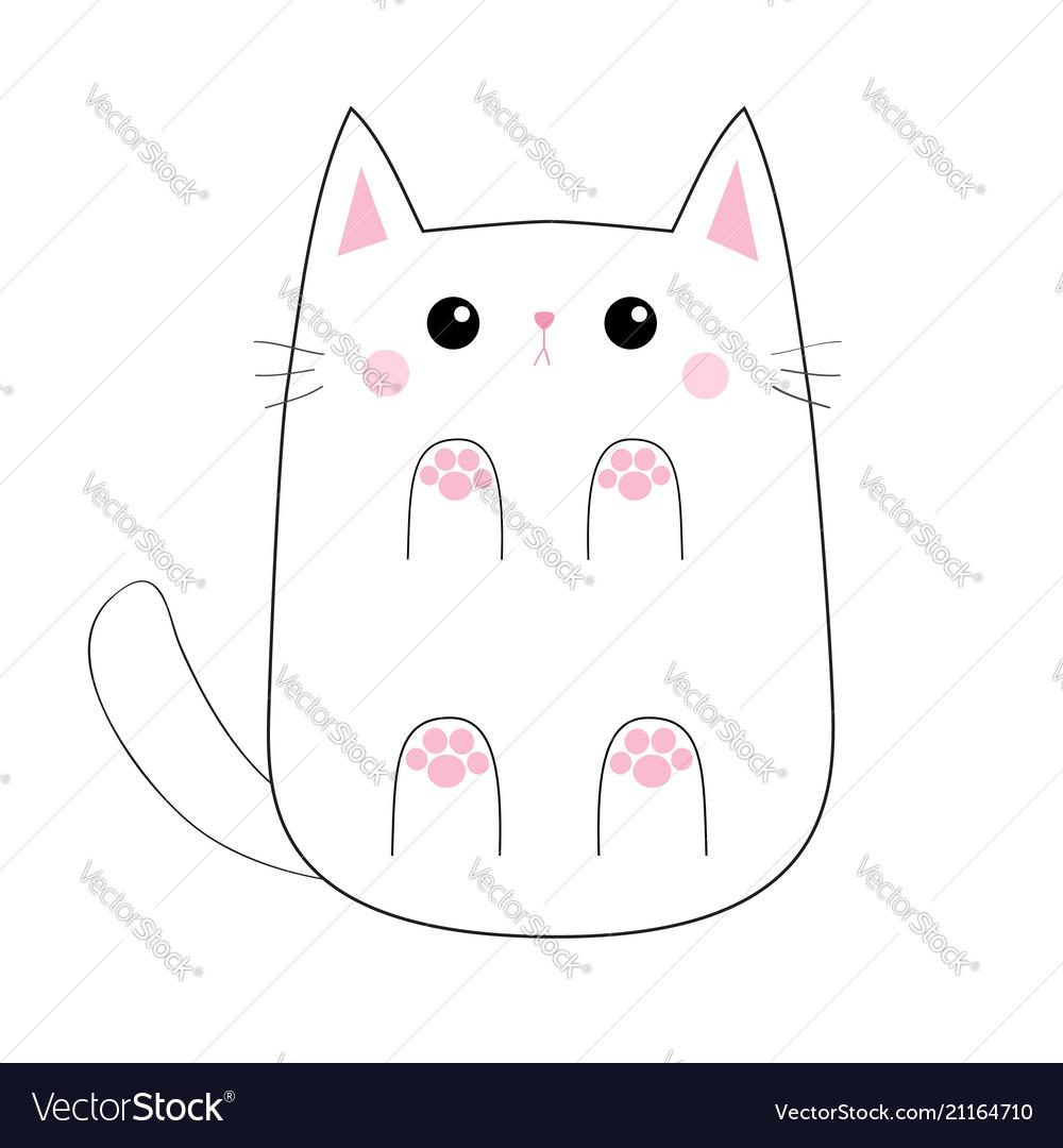 White cute sad cat baby kitten bottom below view