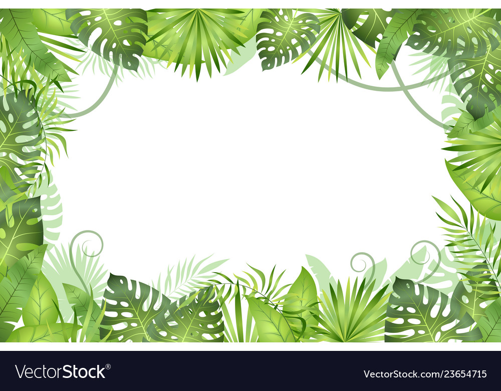 Jungle background tropical leaves frame