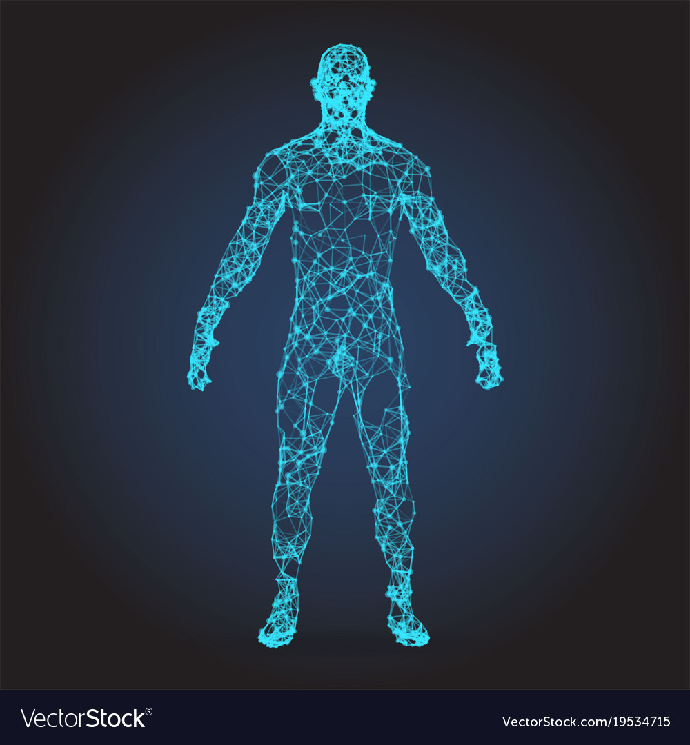 Low poly wireframe human body abstract Royalty Free Vector
