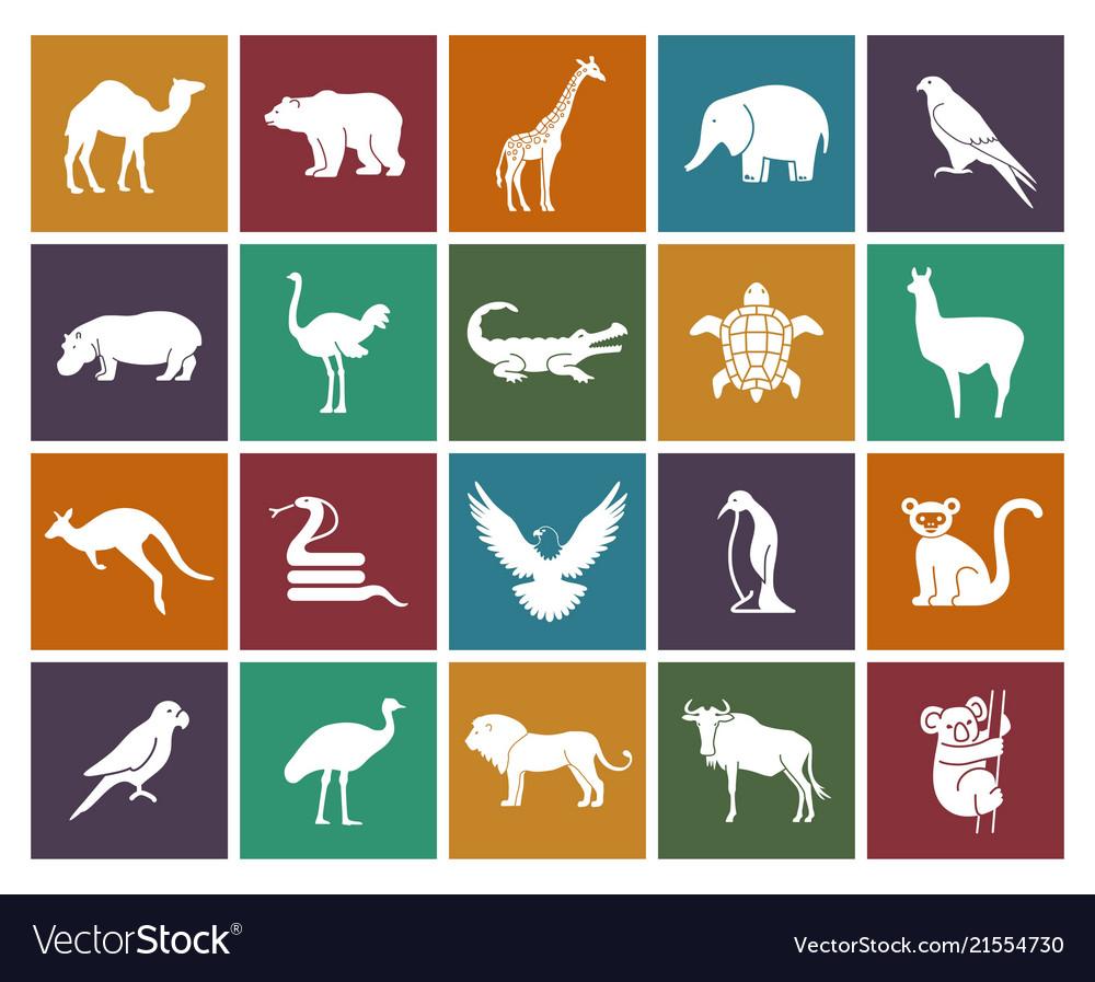 Wild animals and birds icons set