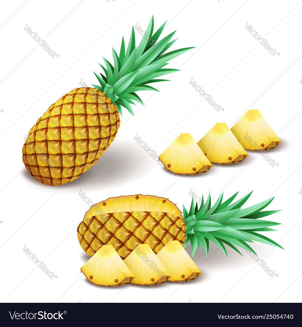 Bright realistic pineapple with slices pieces