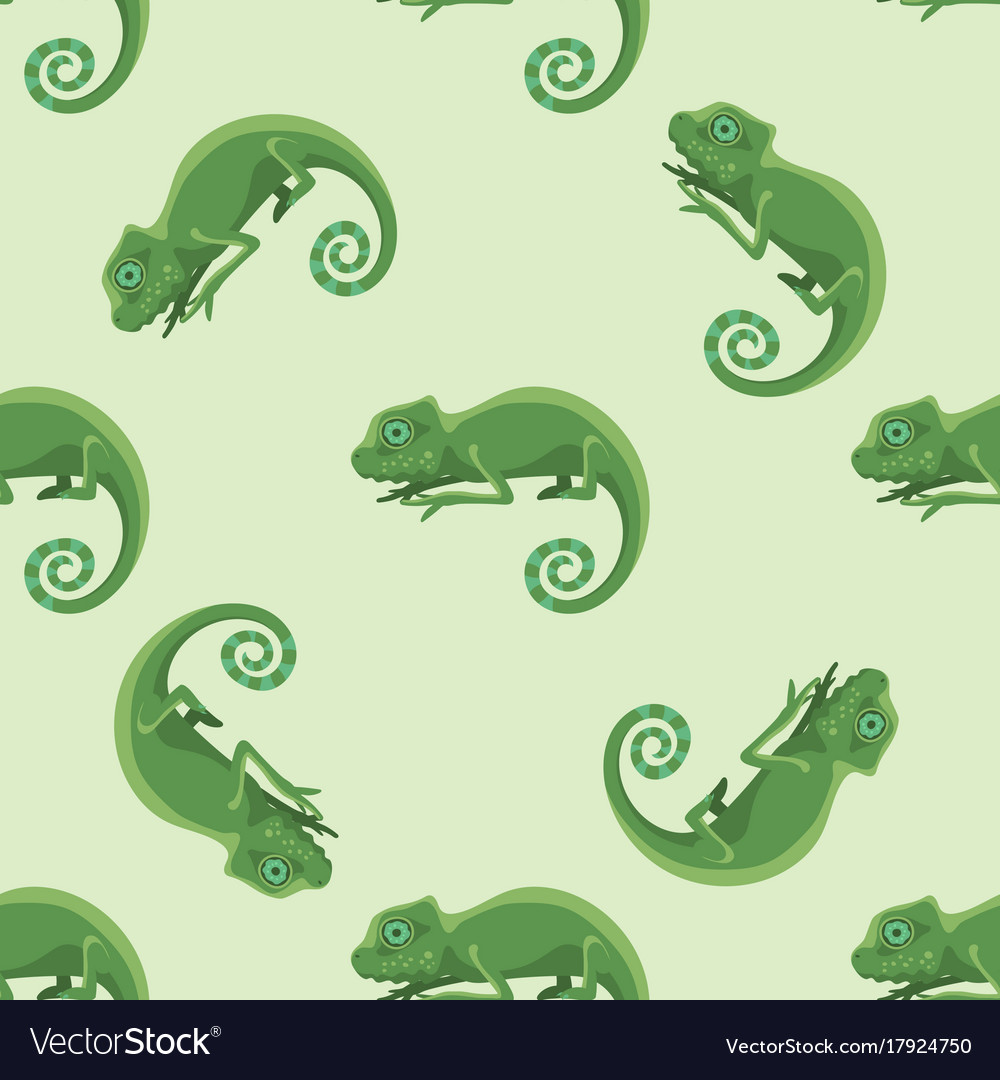 Reptile chameleon amphibian seamless pattern