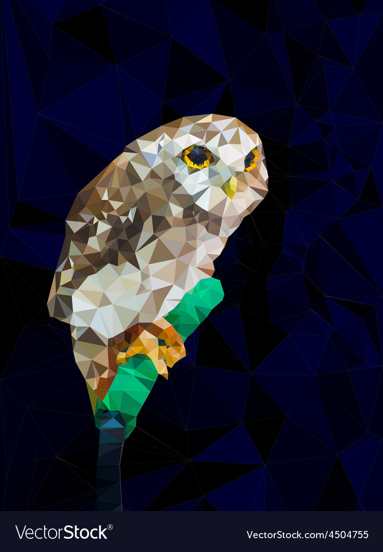 Low poly design geometric of owl vector image