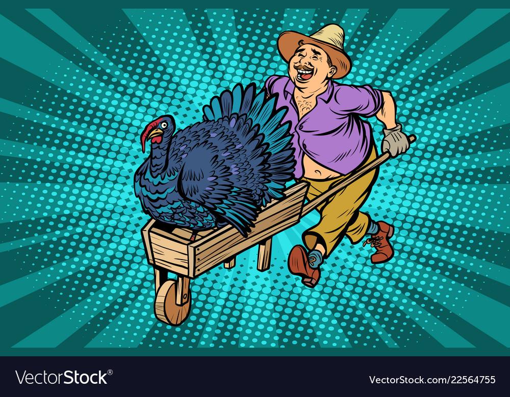 Turkey bird thanksgiving day holiday farmer man
