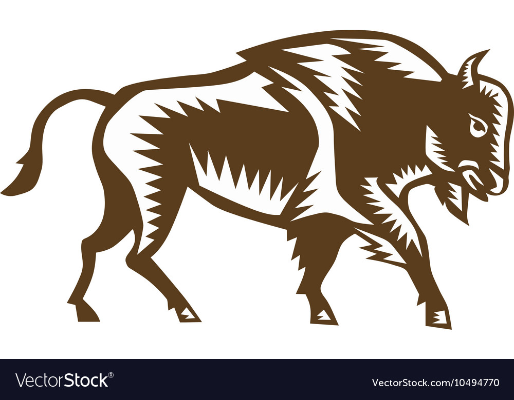 American Bison Woodcut vector image