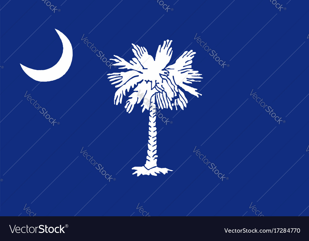 South Carolina State Flag Royalty Free Vector Image