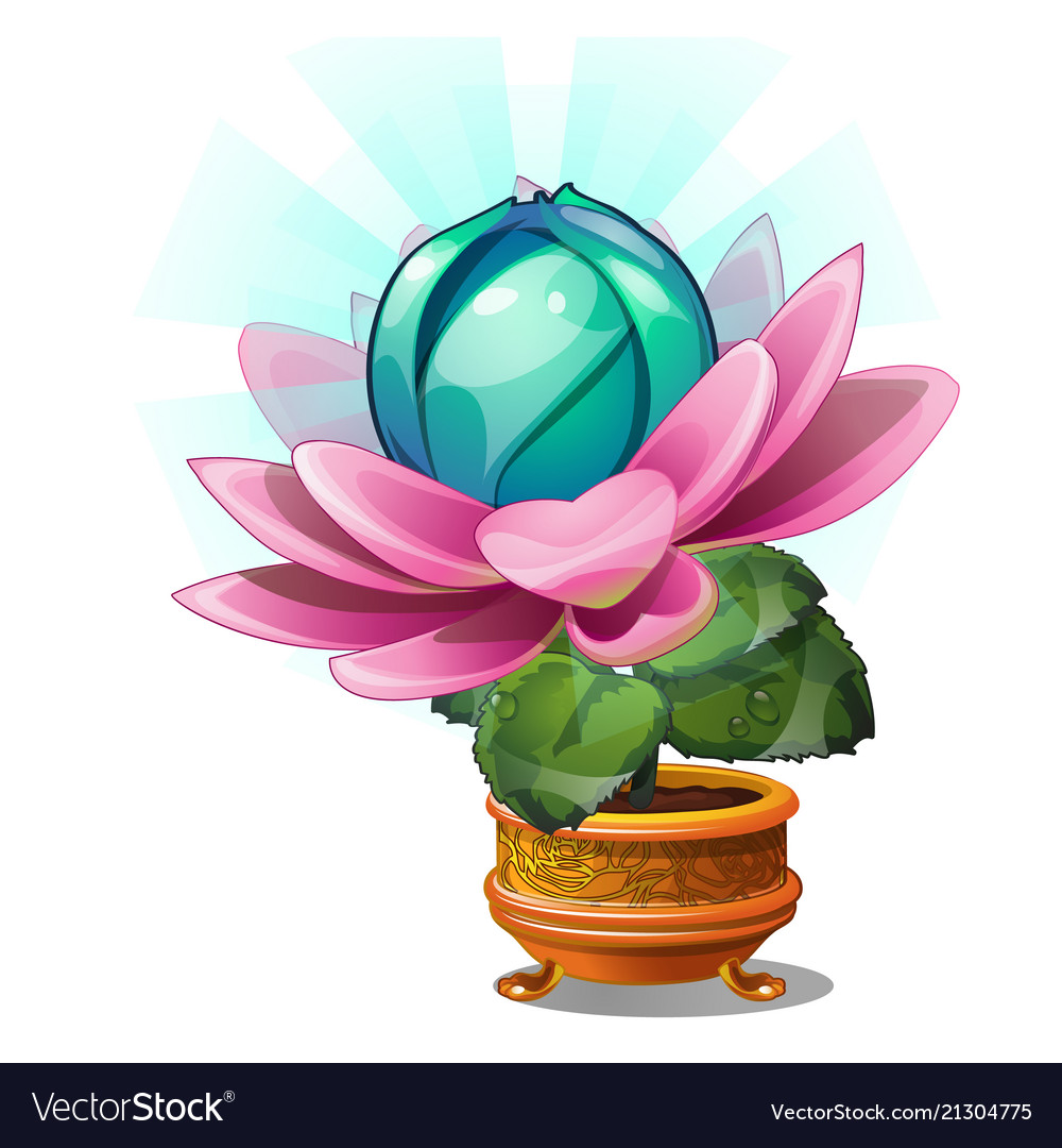 Blooming fantasy flower in the gold flower pot