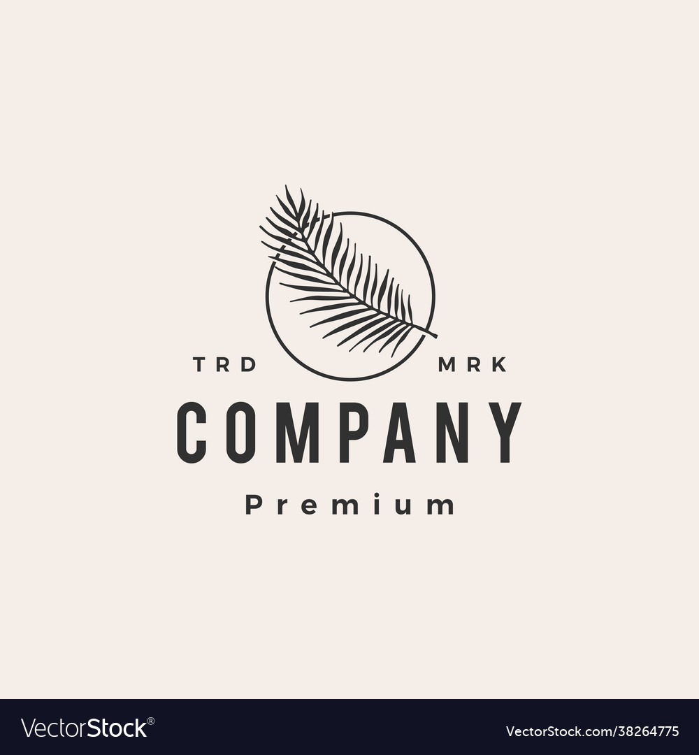 Palm leaf round hipster vintage logo icon