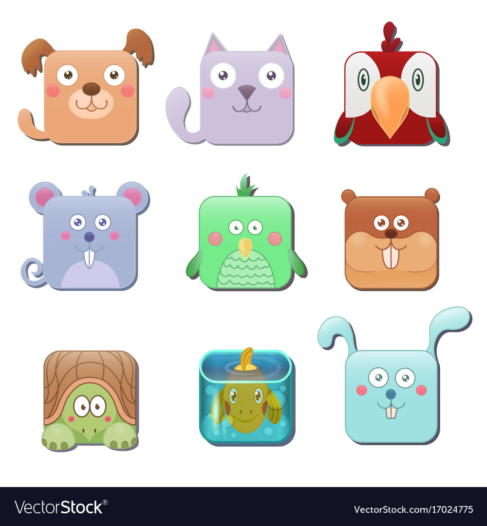 Set of cute square animals dog cat parrot mouse