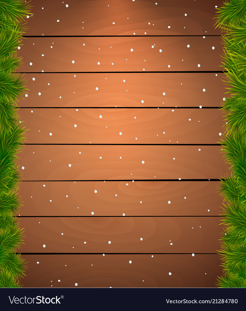 Christmas snow background with fir twigs