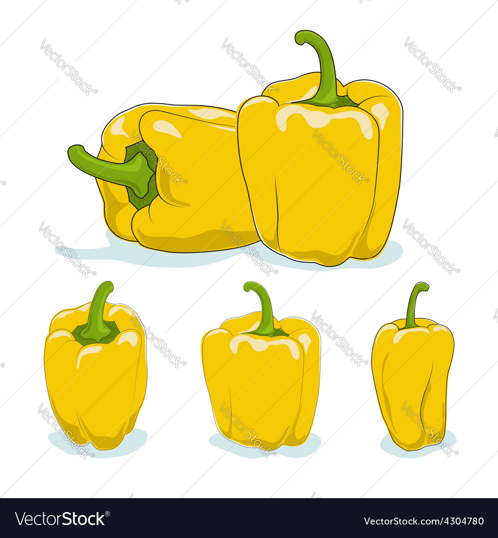 Yellow bell peppersweet pepper or capsicum