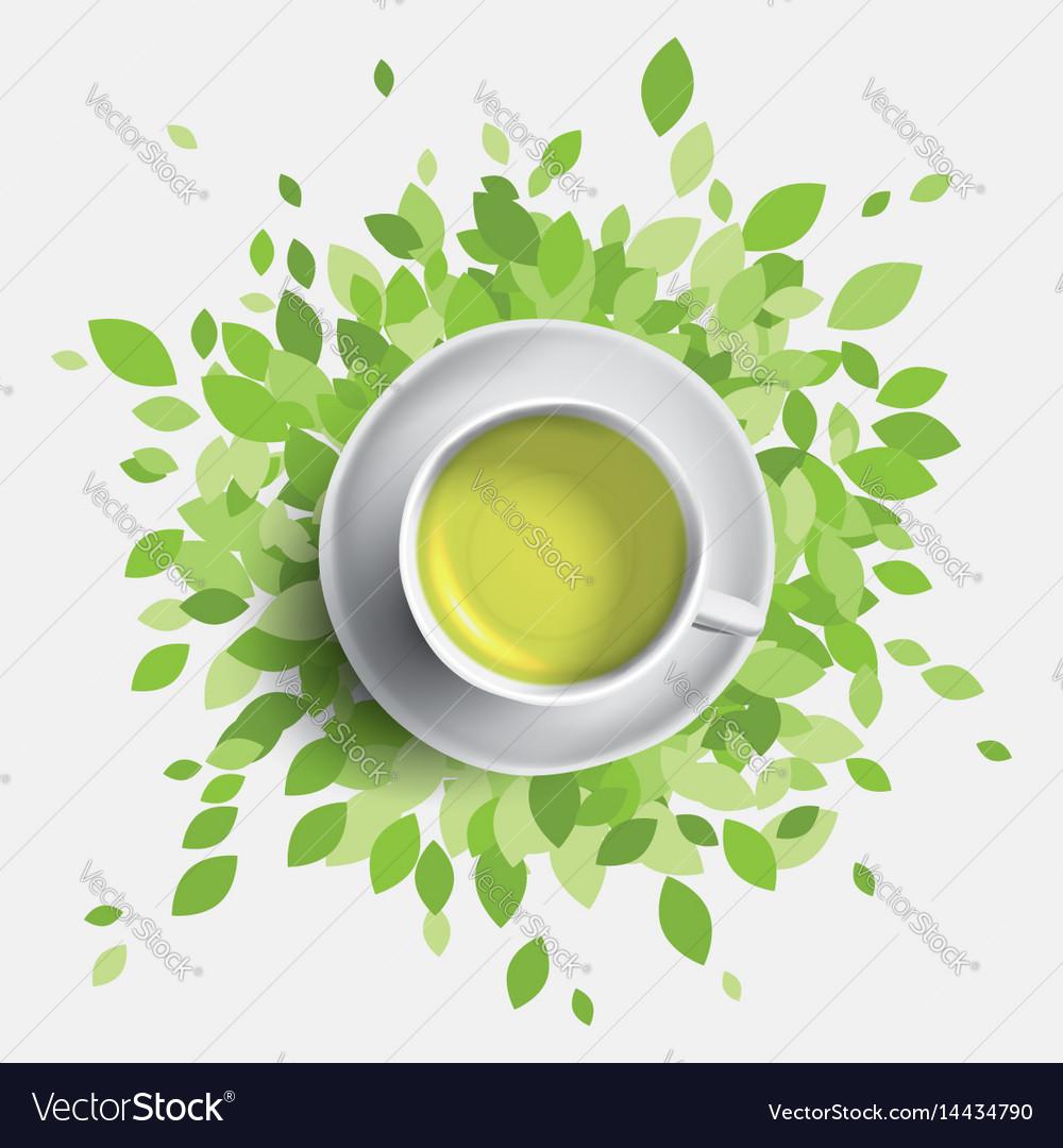 Green tea cup green leaves