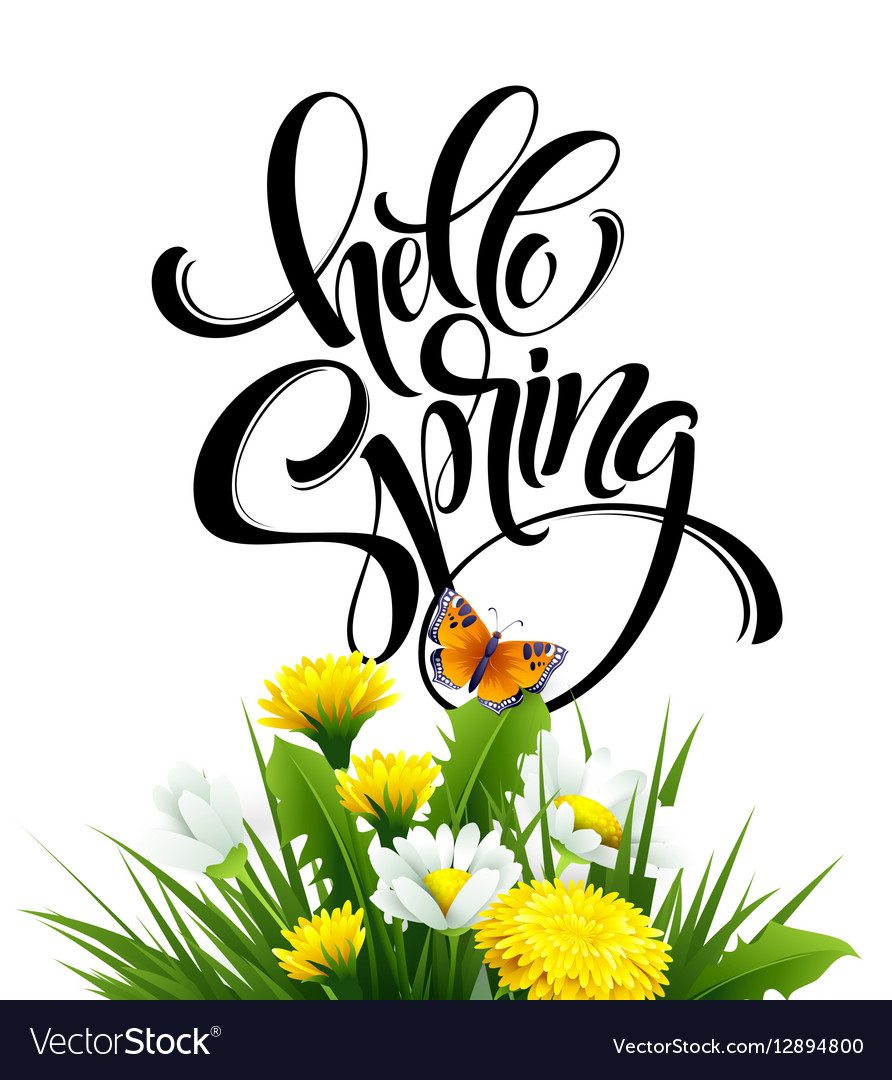 inscription hello spring hand lettering on vector image rh vectorstock com vector spring flowers vector spring tx