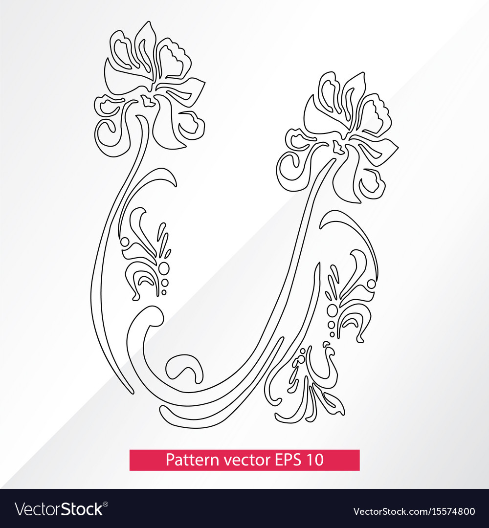 Ornament and decor design elements decoration of vector image