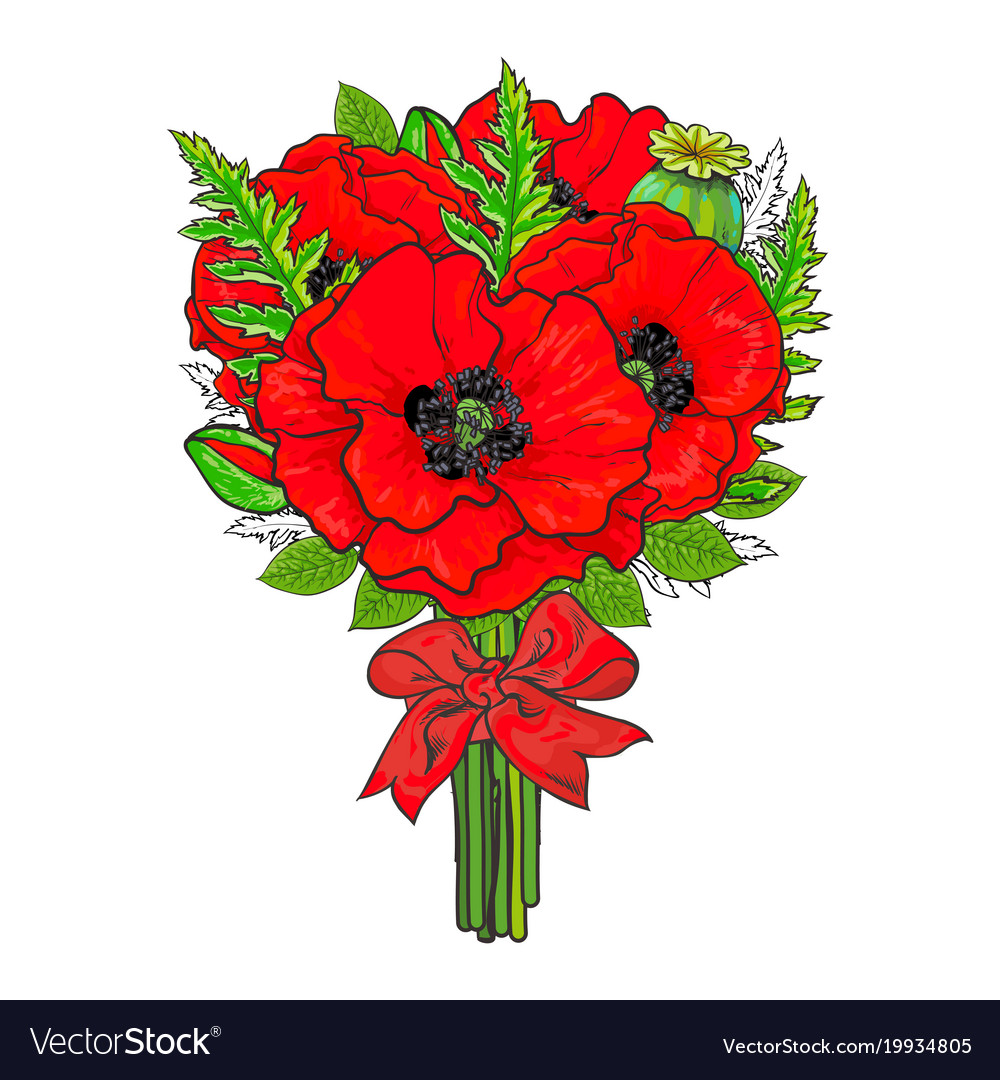 Big bunch of red poppy flowers tied with ribbon vector image mightylinksfo Image collections