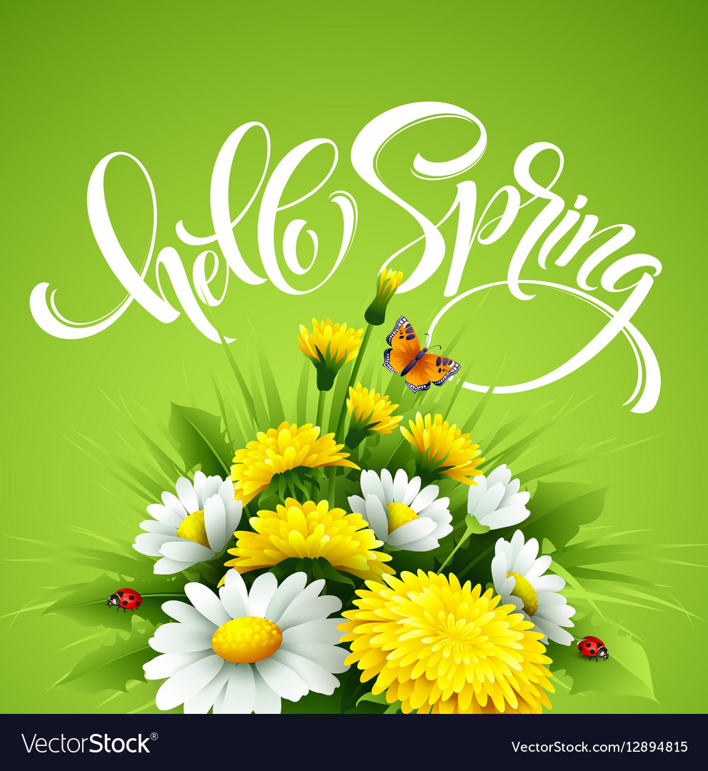 Inscription Hello Spring Hand Lettering on
