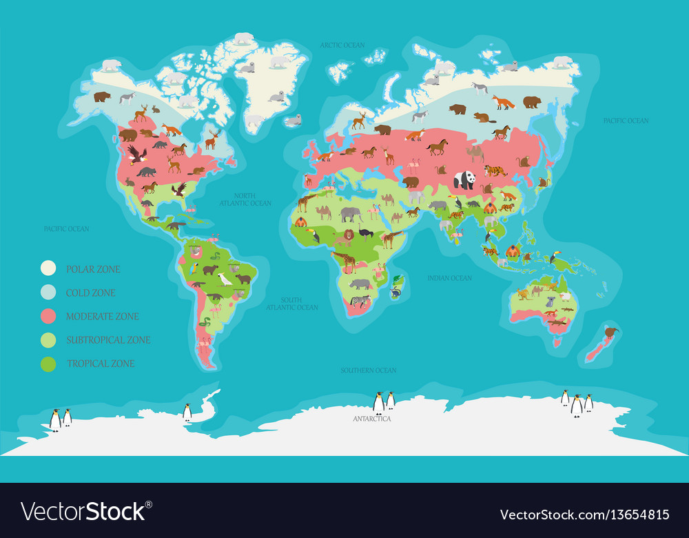 World map climate zone and animal