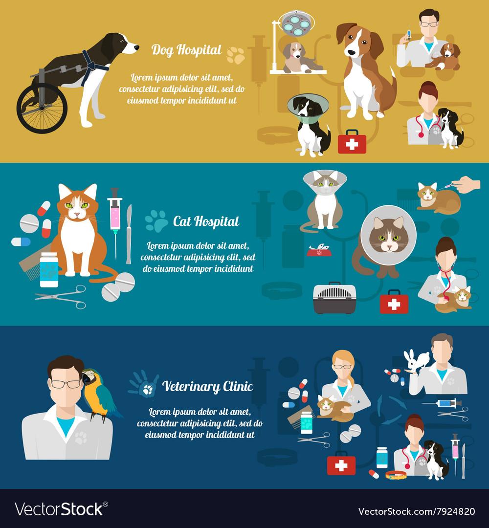 Set horizontal banners pet care vet clinic