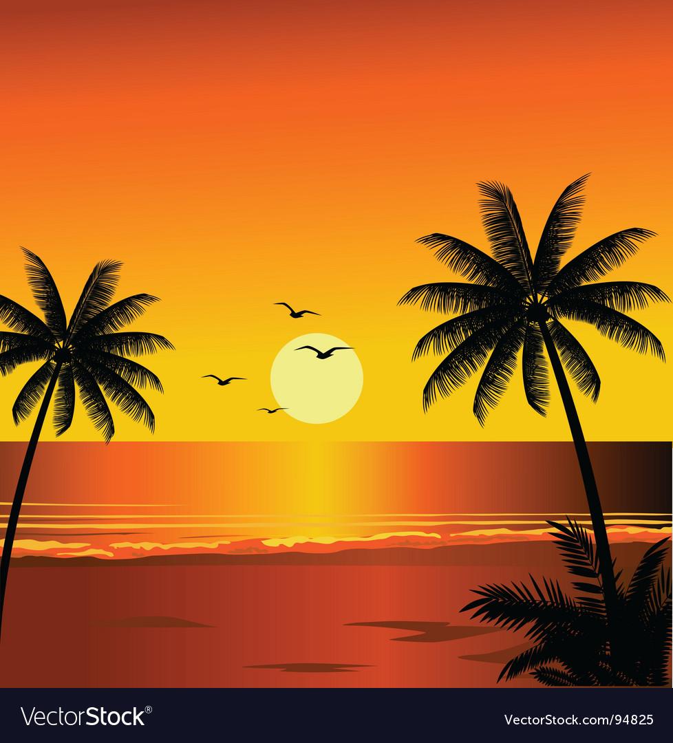 beach sunset royalty free vector image vectorstock