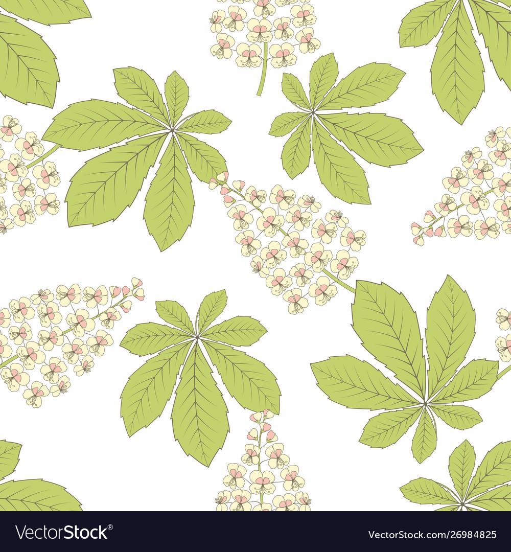 Chestnut flower leaf seamless pattern