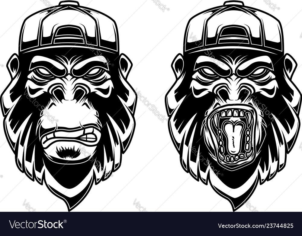 Set of gorilla in baseball cap on white