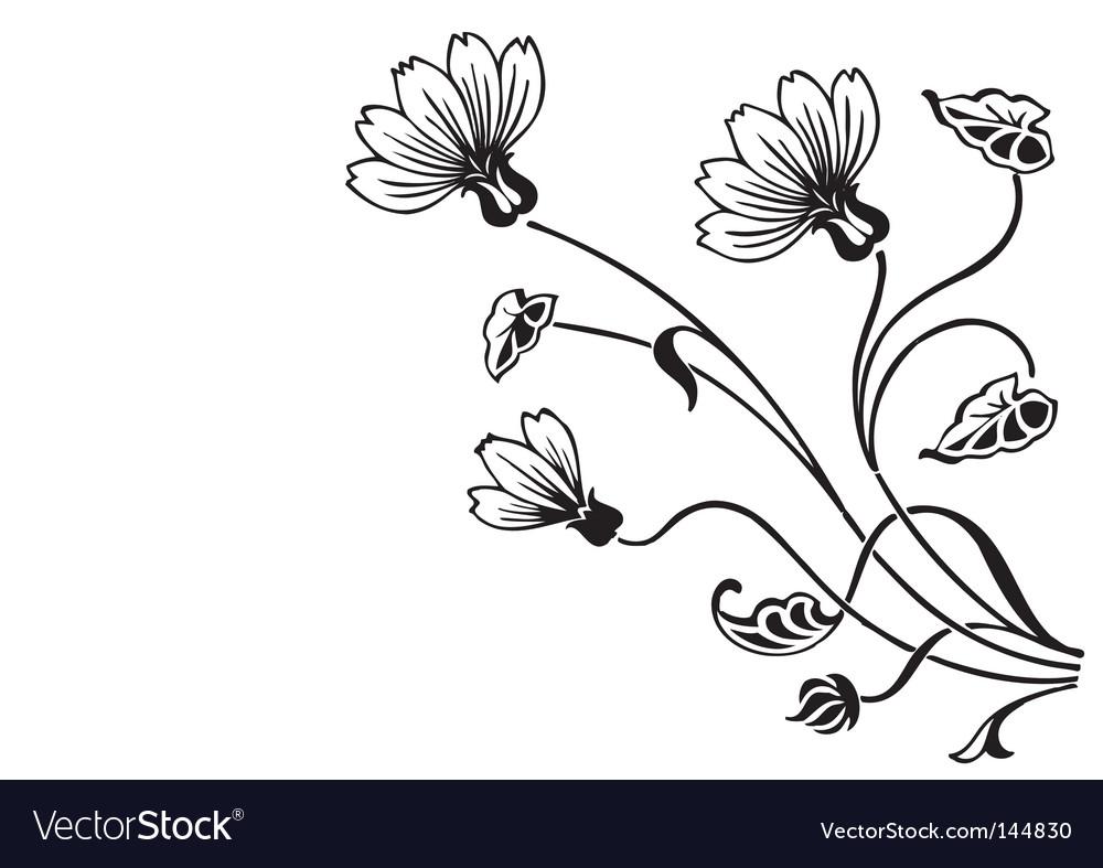 Antique floral ornament engraving vector image