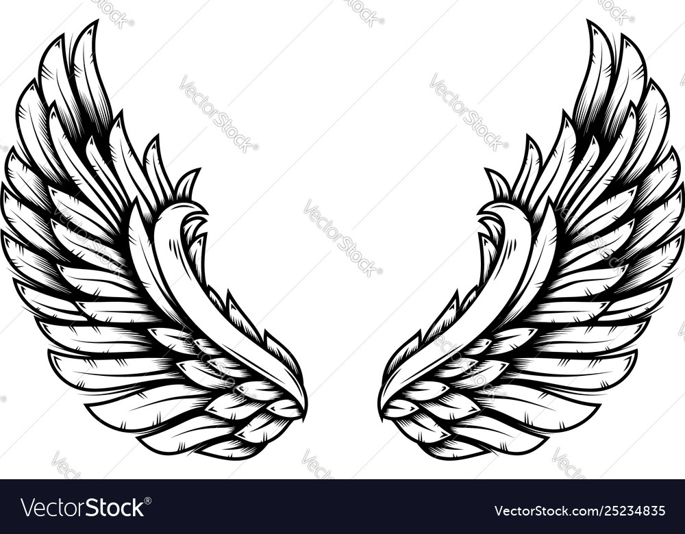 Wings in tattoo style isolated on white