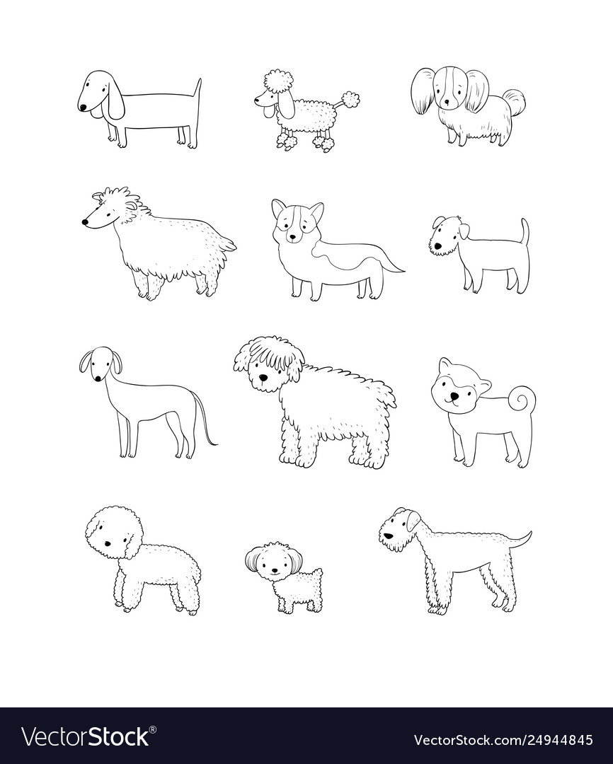 Dogs collection cute cartoon puppies different