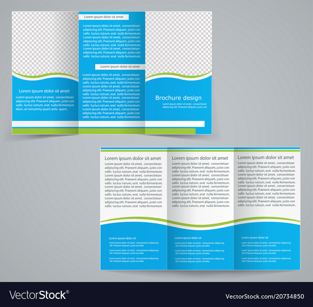 Tri fold business brochure template royalty free vector tri fold business brochure template vector image fbccfo Choice Image