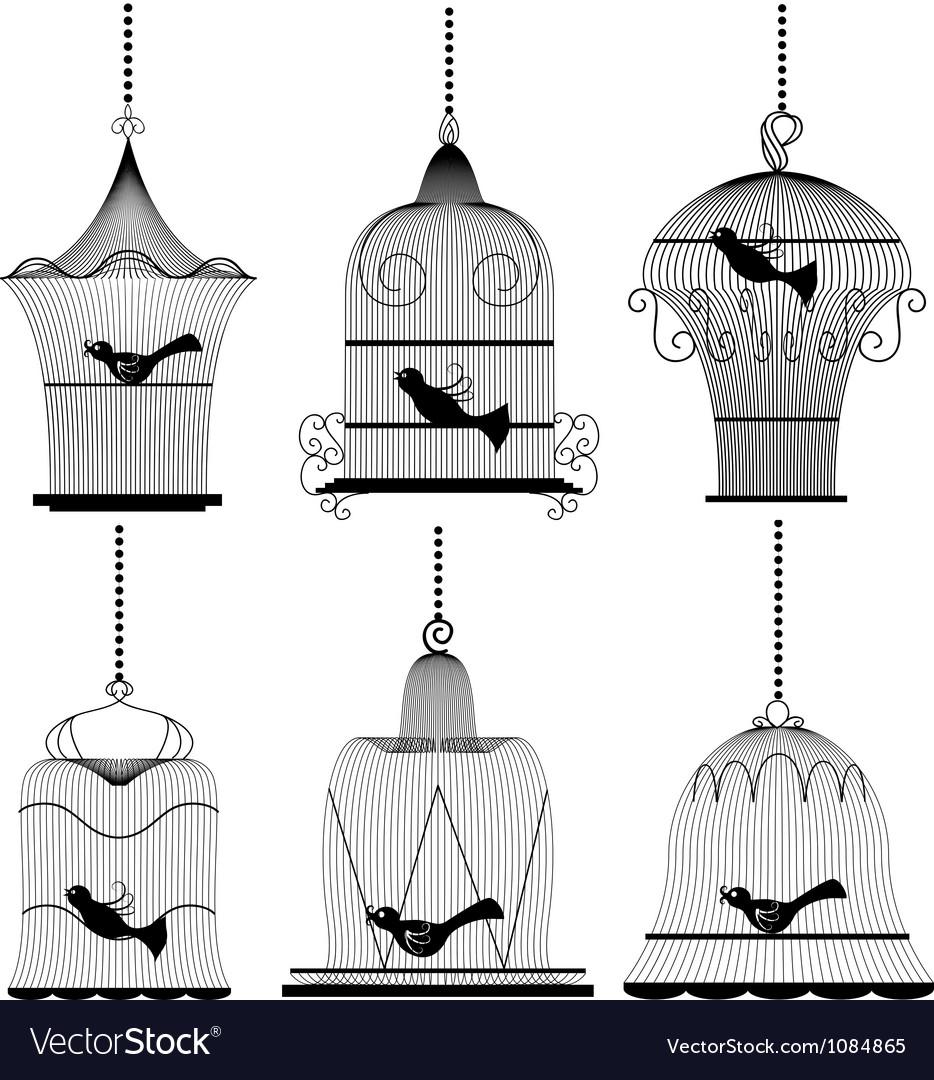 Vintage bird cage set
