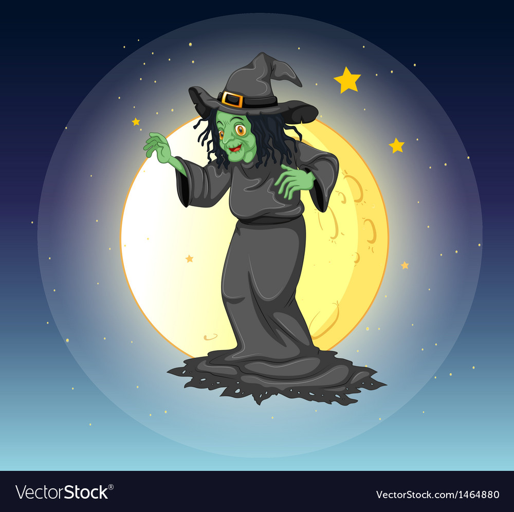 A witch at the fullmoon vector image
