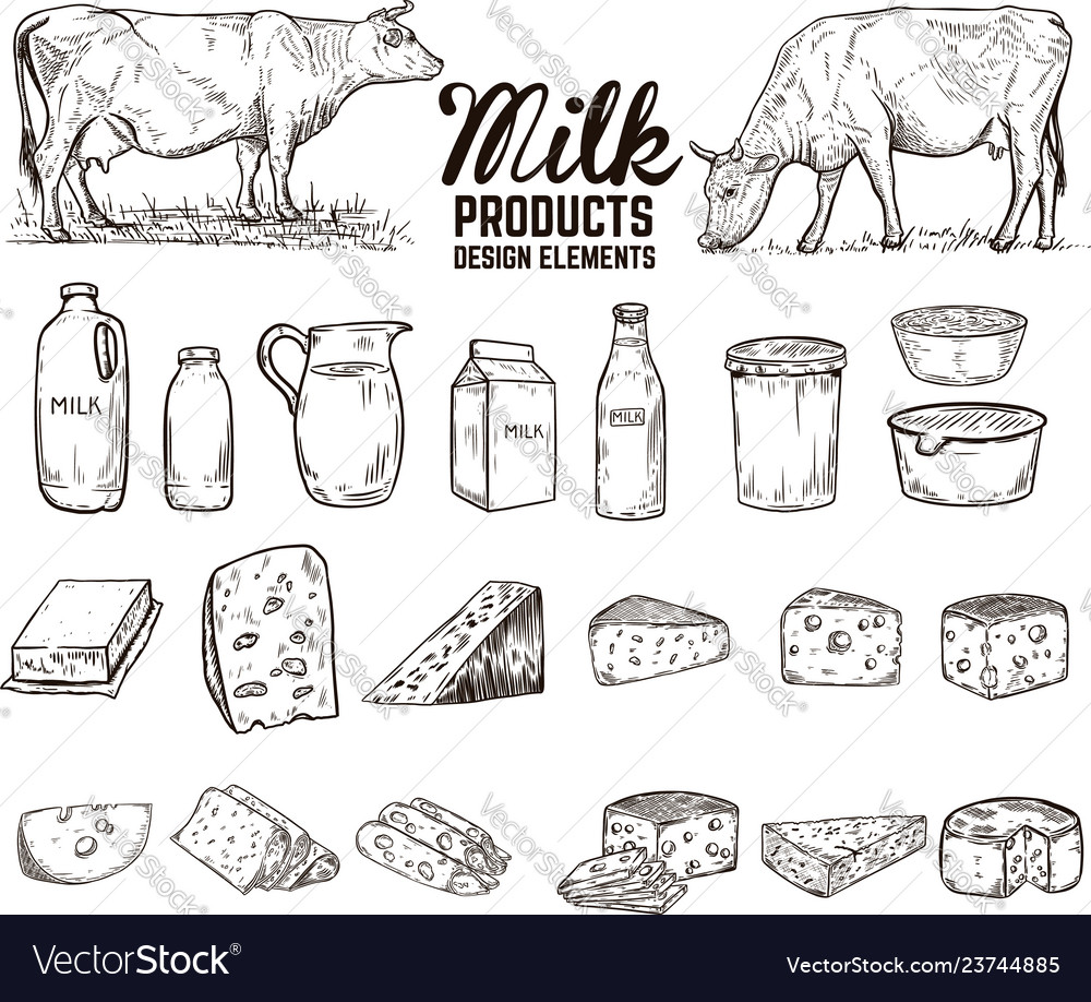 Set of hand drawn milk products design elements