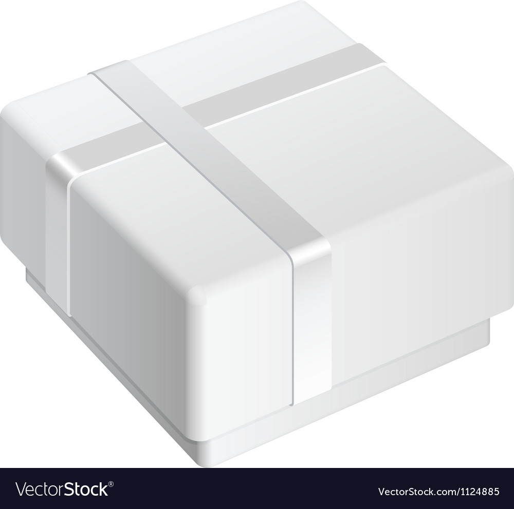White blank Package Box For gift vector image