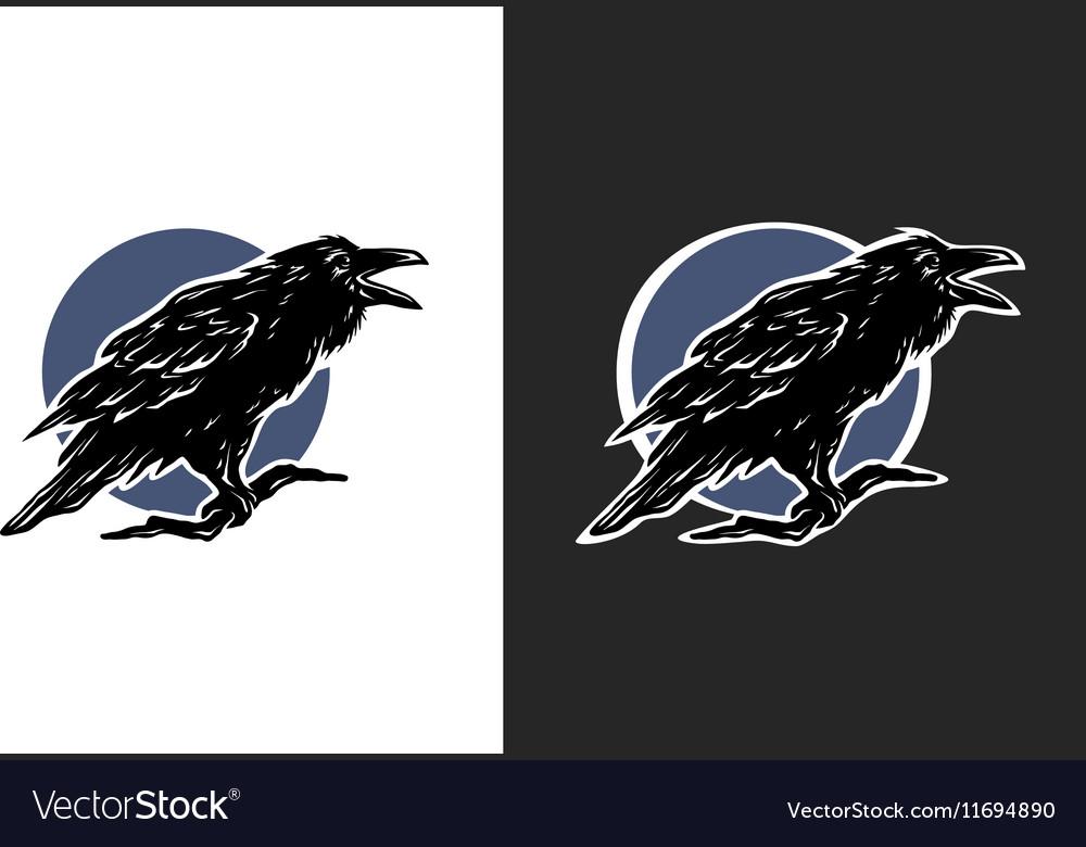 Black Crow two options