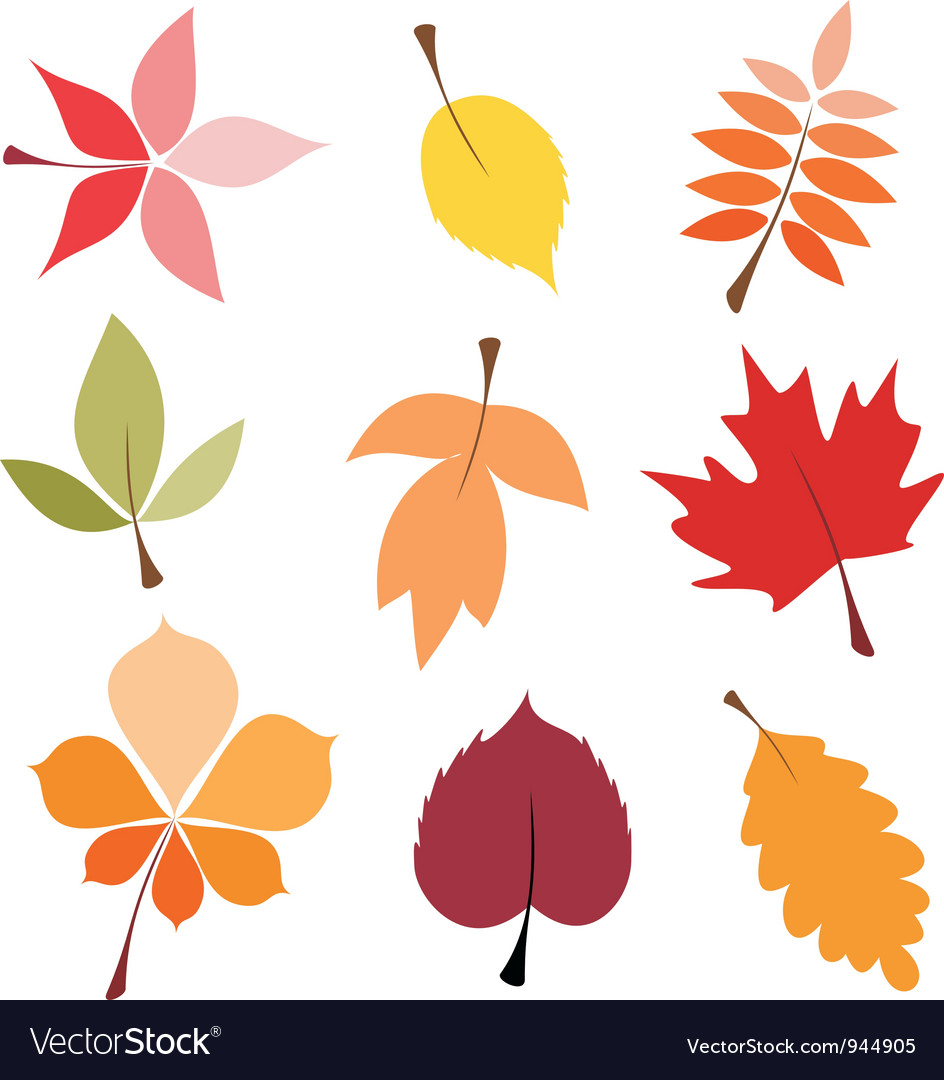 autumn leaves royalty free vector image vectorstock rh vectorstock com leaves vector free leaves vector black