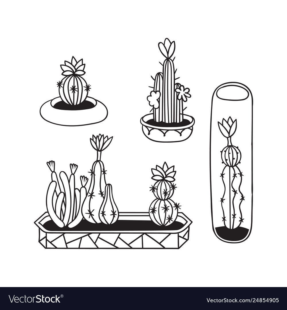 Set cactuses for coloring books