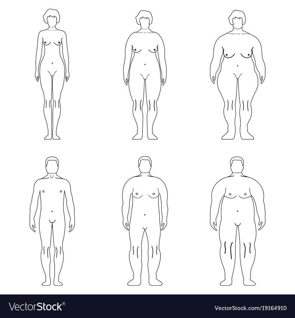 Fat European Man Outline Style Human Front Side Vector Image