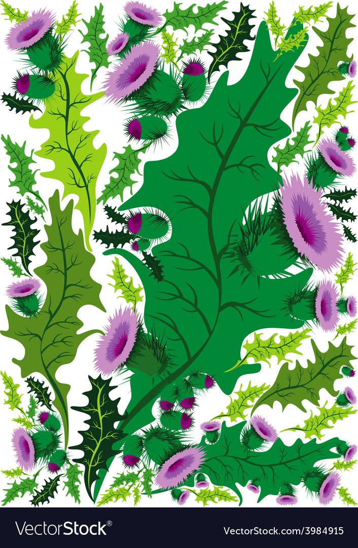 Beautiful decorative border of flowers thistle