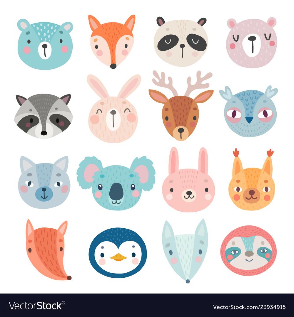 Cute woodland characters bear fox raccoon
