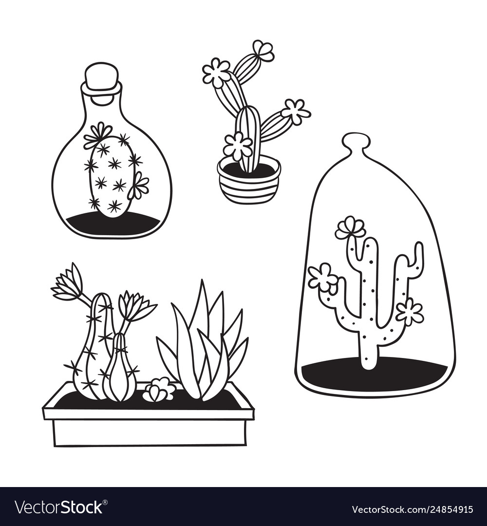 - Set Cactuses For Coloring Books Royalty Free Vector Image
