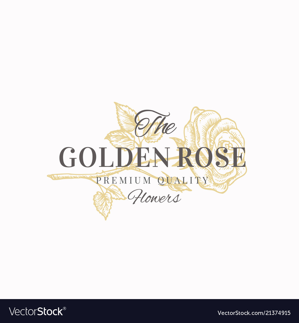 The golden rose premium quality flowers abstract