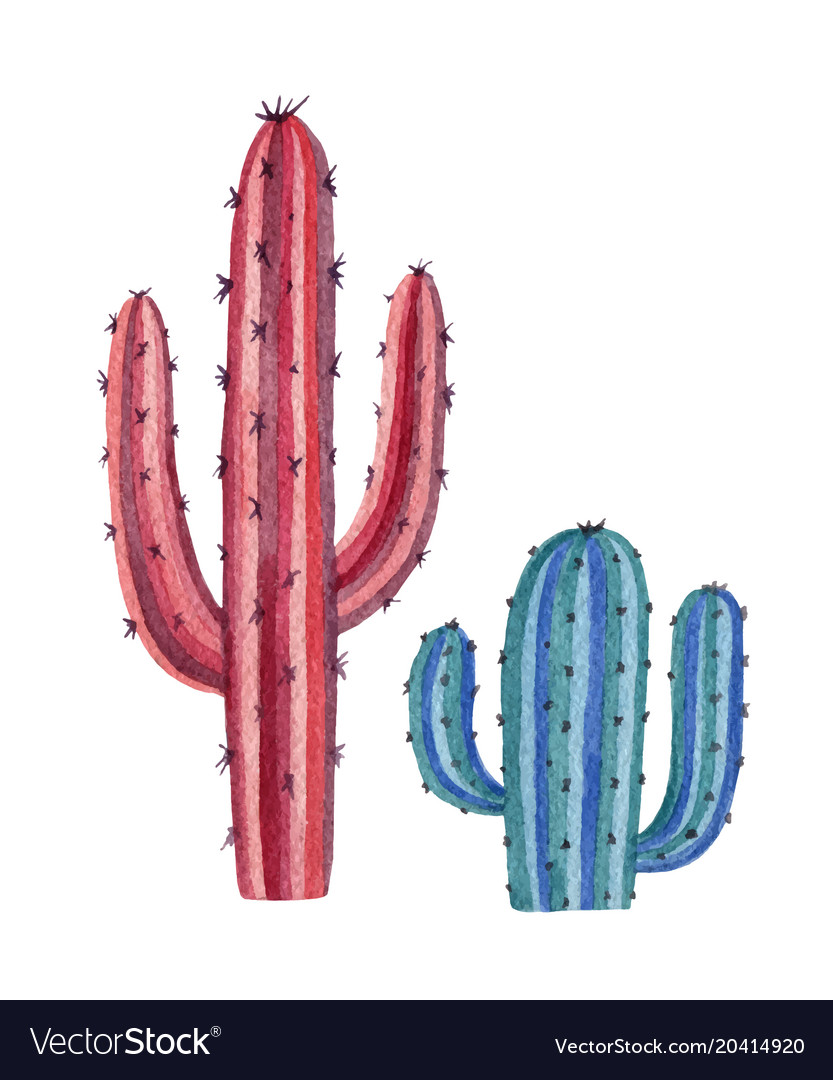 Watercolor set of cacti and succulent