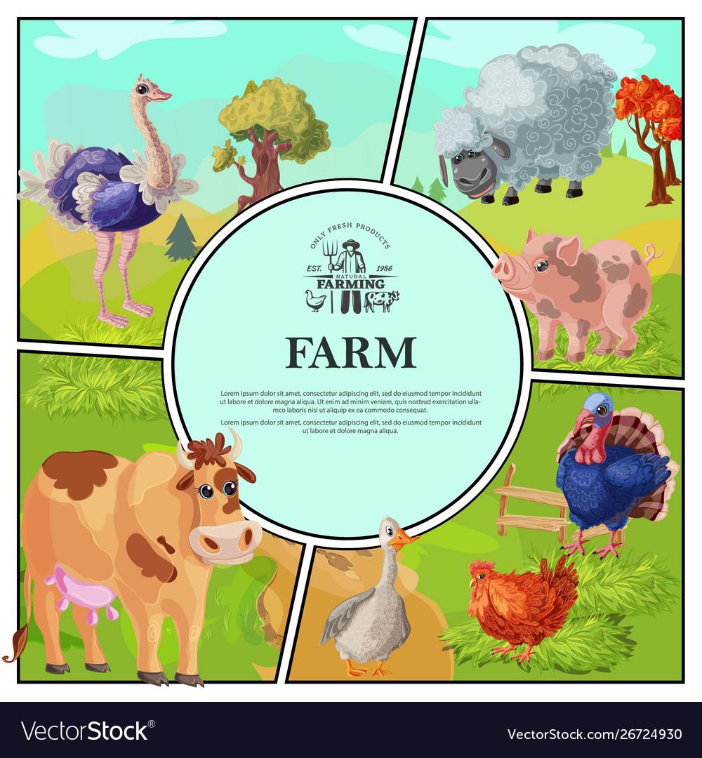 Cartoon farm colorful composition