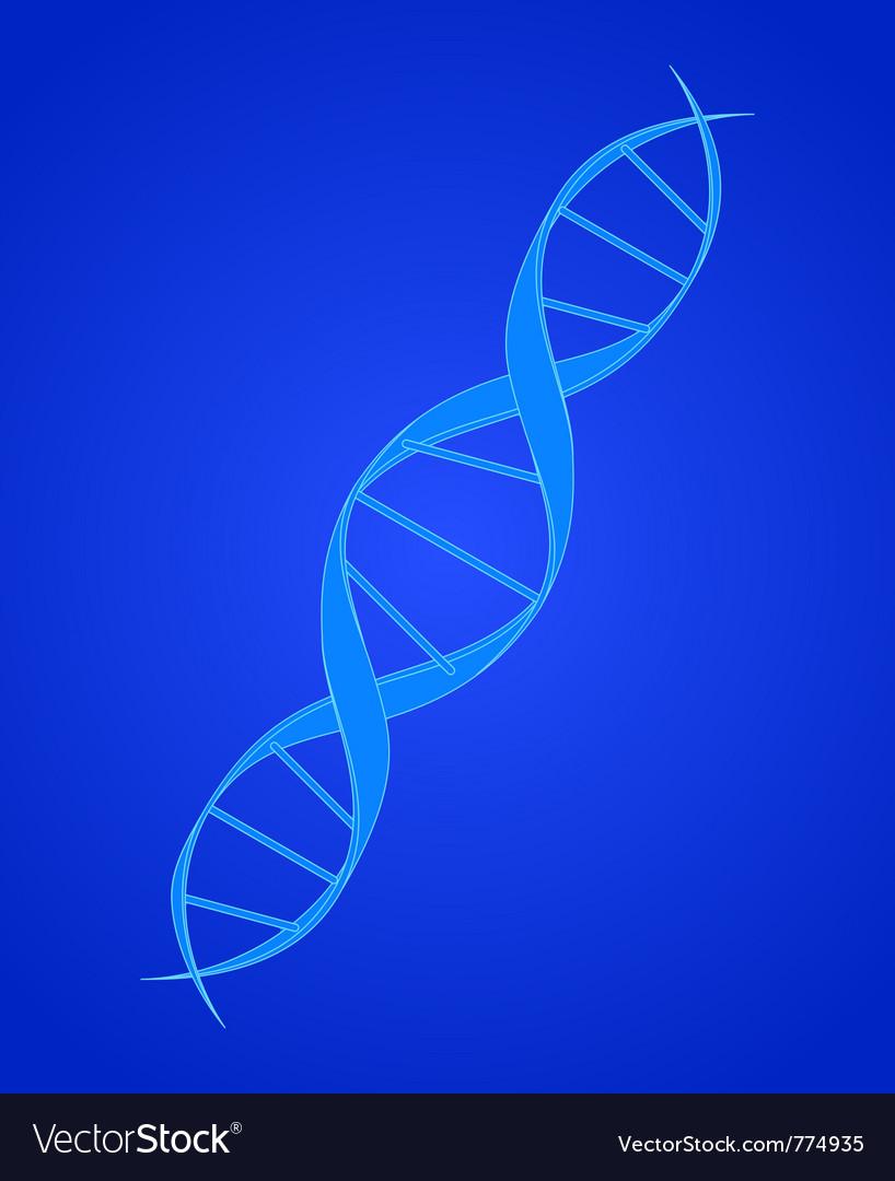 Dna spiral on blue