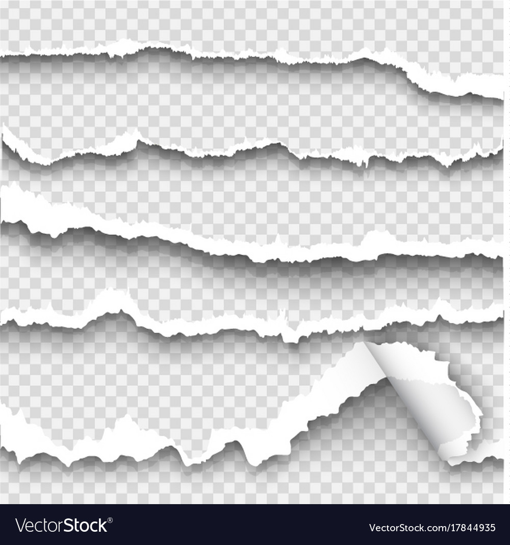 Set torn paper on transparent background