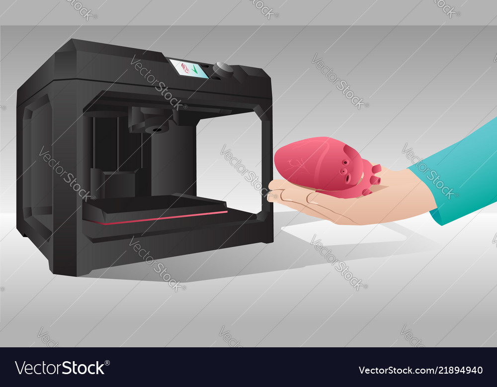 The heart printed on a 3d printer